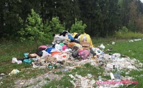Вывоз мусора кропоткинскаяфото989