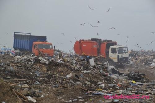 Бункер для мусора 8 м3 купитьфото1073
