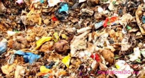 Вывоз мусора пухто 27 кубовфото734