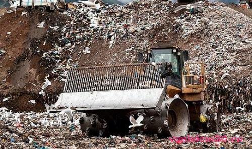 Вывоз мусора в сходнефото1394