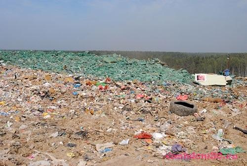 Вывоз мусора шереметьевская улицафото1388