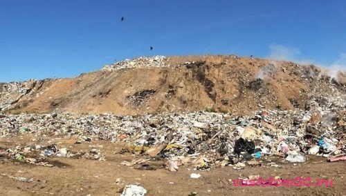 Контейнер мусорный ценафото182