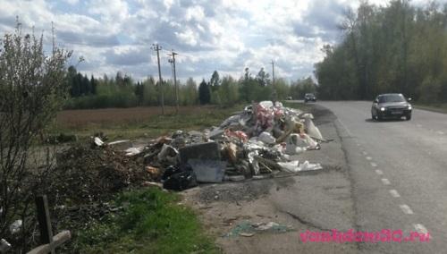 Вывоз строительного мусора контейнер 8 м3 дмитровфото1849