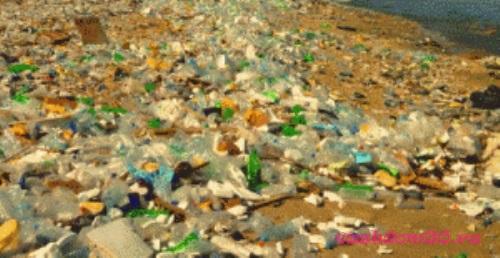 Вывоз мусора полежаевскаяфото338