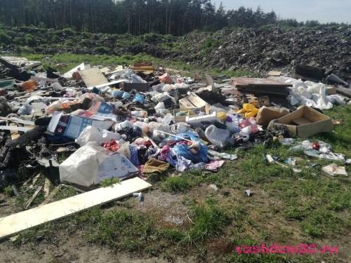 Вывезти мусор в мытищахфото870