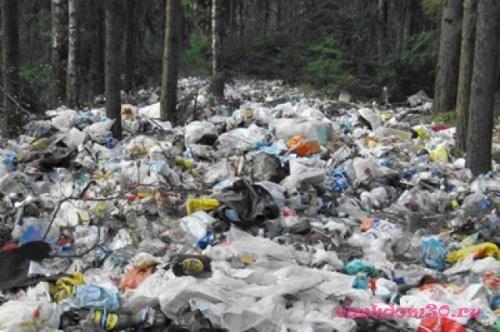 Вывоз строительного мусора в дмитровефото21