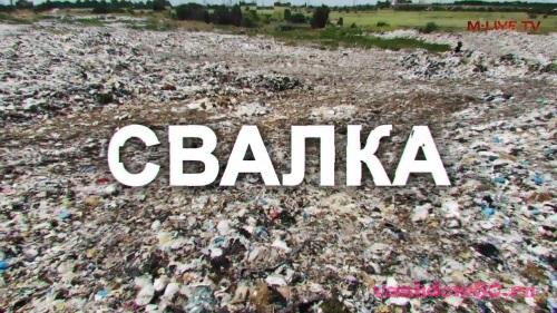 Вывоз мусора лесопарковаяфото602