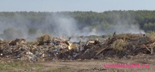 Вывоз мусора алма-атинскаяфото256