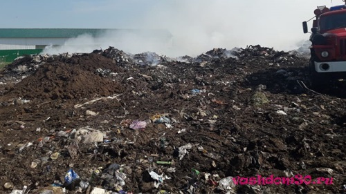 Вывоз мусора водный стадионфото377