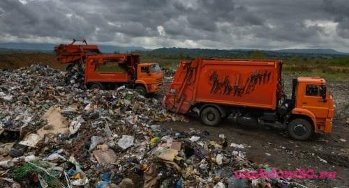 Кубинка вывоз мусора с дачифото1387