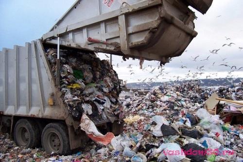 Вывоз мусора орехово-зуевофото405