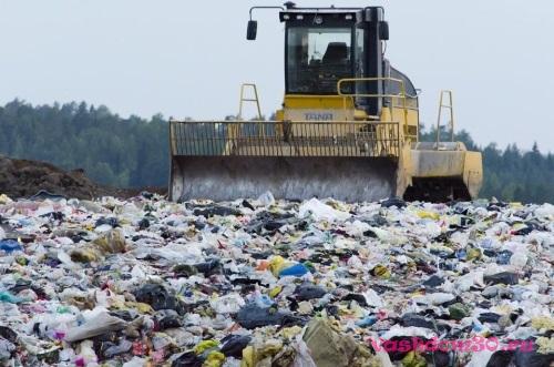 Вывезти мусор в истрефото1237